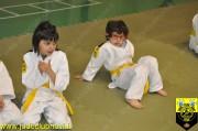 JudoClubNovi106
